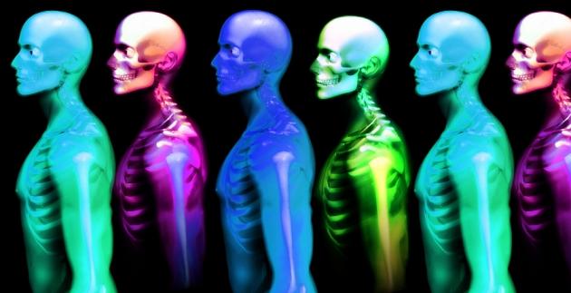 10 curiosidades sobre el cuerpo humano | VISTOENLAWEB.ORG