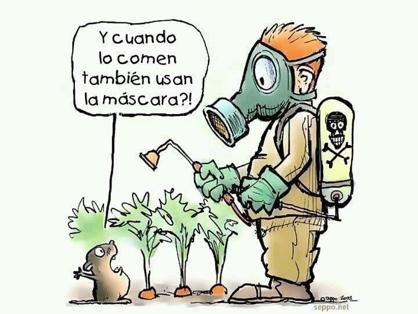 Qu son los pesticidas para qu se utilizan como for Casa del insecticida