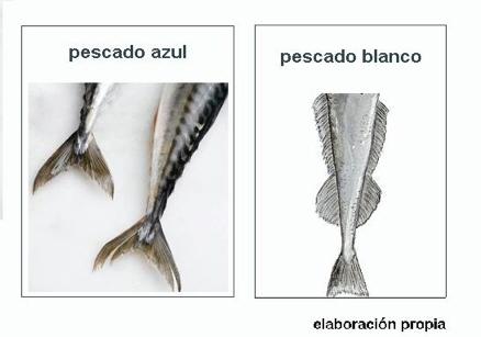 Resultado de imagen de pescado blanco o pescado,azul
