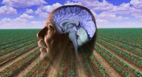 Parkinsons_and_Pesticides