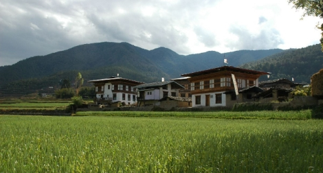 Butan-el-primer-pais-con-toda-su-agricultura-ecologica