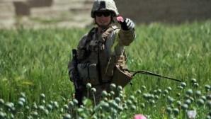 Oncle-Sam-et-l-opium-d-Afghanistan
