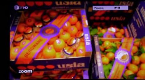 TV reportaje El amargo negocio de las naranjas