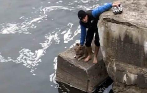 La-alegría-de-un-perro-al-ser-rescatado-de-una-muerte-segura
