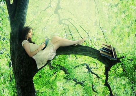 Por qué debes caminar descalzo por el bosque o la importancia de reconectarse con la naturaleza