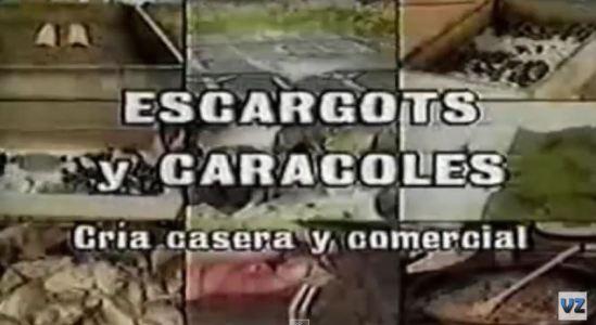 Cria de Caracoles y Escargots_