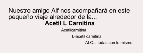 Alf-00